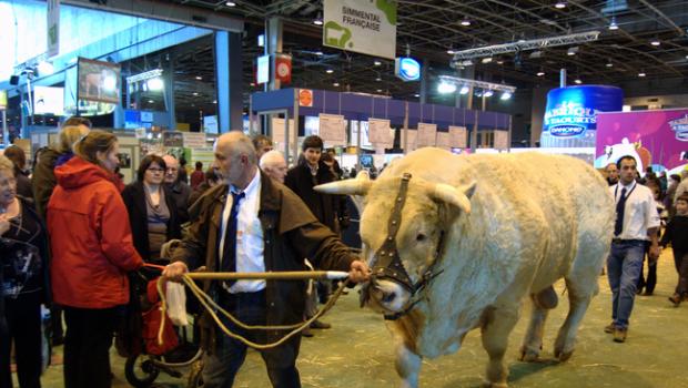 Salon de l'agriculture Paris : le bilan d'un excellent cru 2015