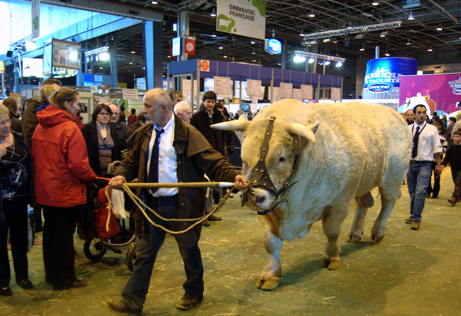 Bilan du salon de l 39 agriculture paris 2015 - Programme salon agriculture 2015 ...