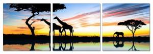 afrique-africa-sunrise-in-africa
